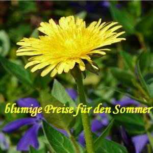 Blume 11 Wollbude.de